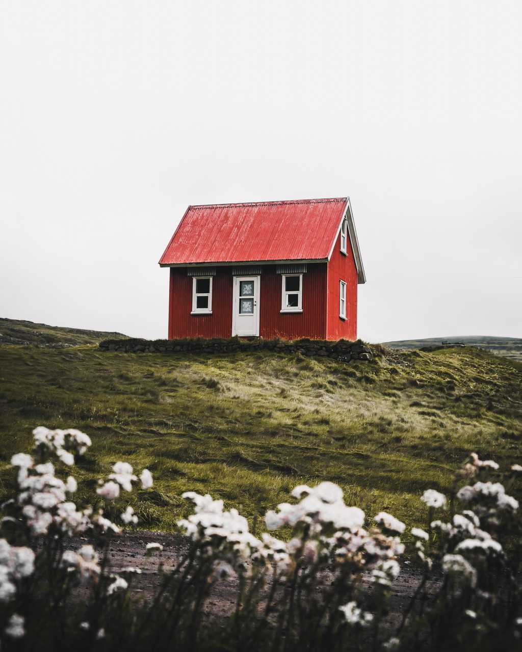 Finding a home - Unsplash / @withluke